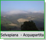 Selvapiana - Acquapartita